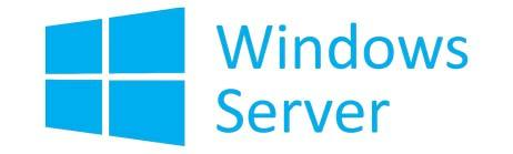 Windows Server logo
